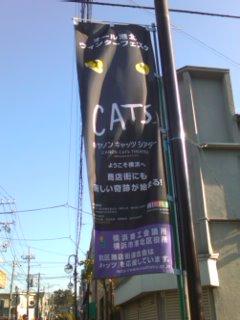 CATS@横浜